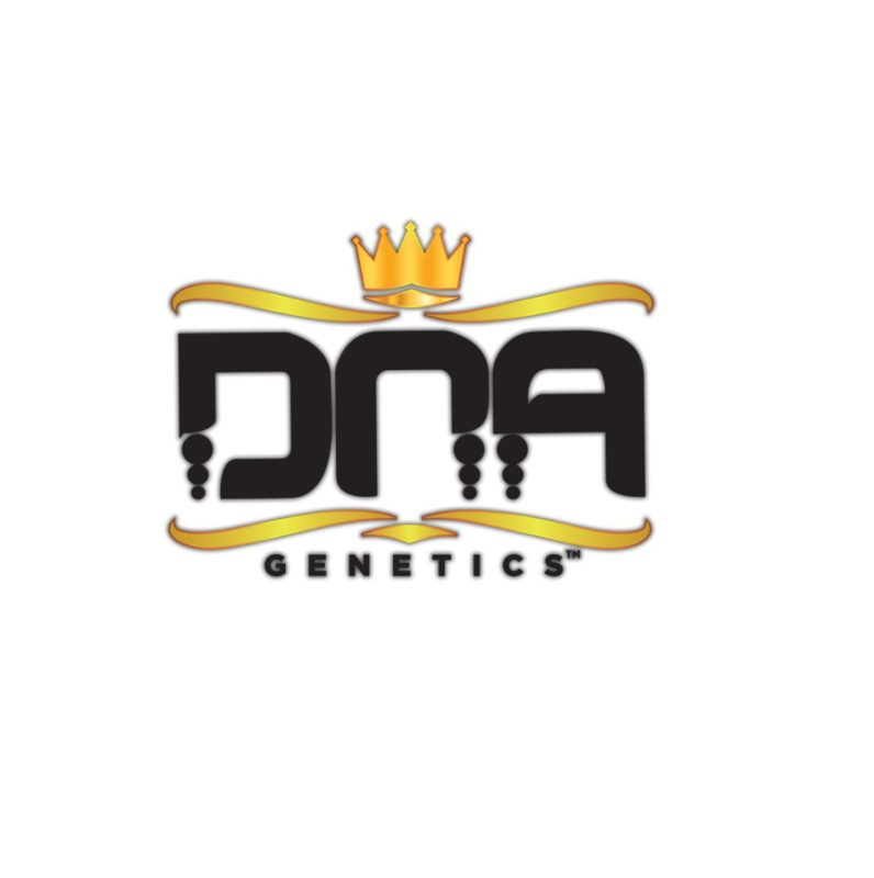 Buy DNA-Genetics seeds uk - Grizzly Seed Bank