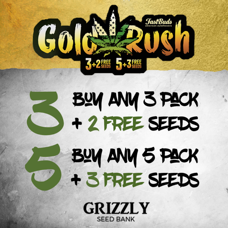 Fastbuds Goldrush Promotion