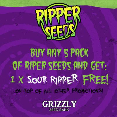 Ripper Seeds Promo
