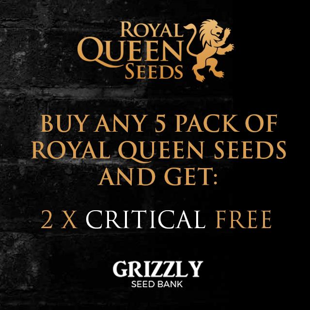 Royal Queen Seeds Promo