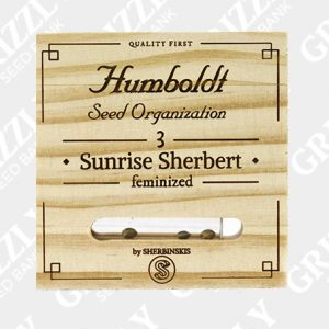 Sunrise Sherbert Feminized Seeds