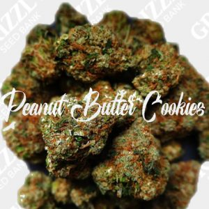 Peanut Butter Cookies Feminized Seeds