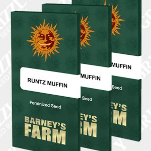 RUNTZ MUFFIN™ Feminized Seeds