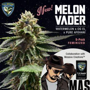 Melon Vader Feminized Seeds