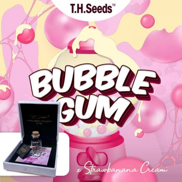 OG Bubblegum X SBC Regular Seeds