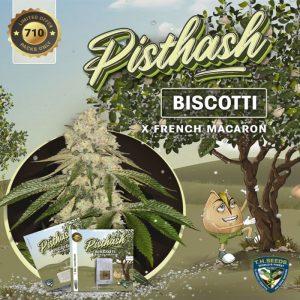 Pisthash Feminized Seeds